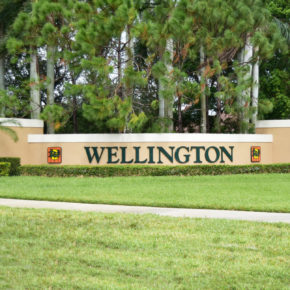 Wellington, Florida Homes for Sale